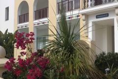 Astiko Prasino Ltd – Cyprus Landscape Design Gardening-Tree Services- Tree Pruning- Cyprus Certified Arborist
